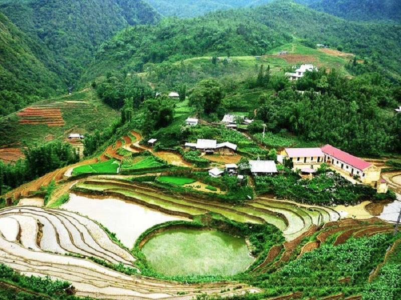 Ideal-times-and-places-to-admire-the-golden-rice-fields-in-the-North3