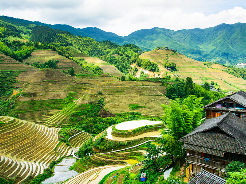 Sapa – Fansipan Experience with Express bus 3Days