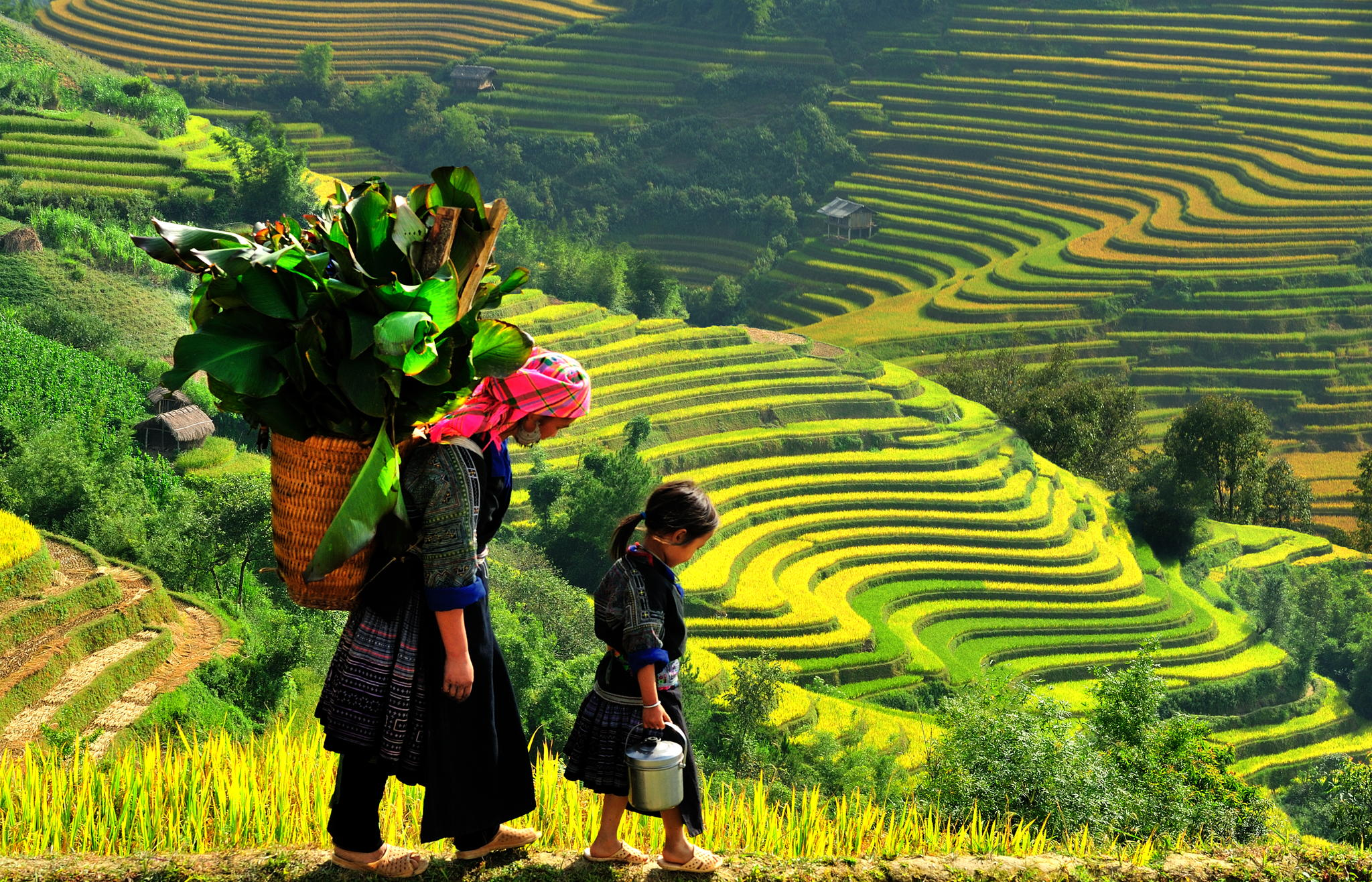 Have a wonderful Sapa tours 1 day in Ta Van Village