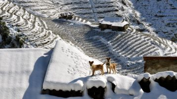 Sapa - the only place to has snow in Vietnam